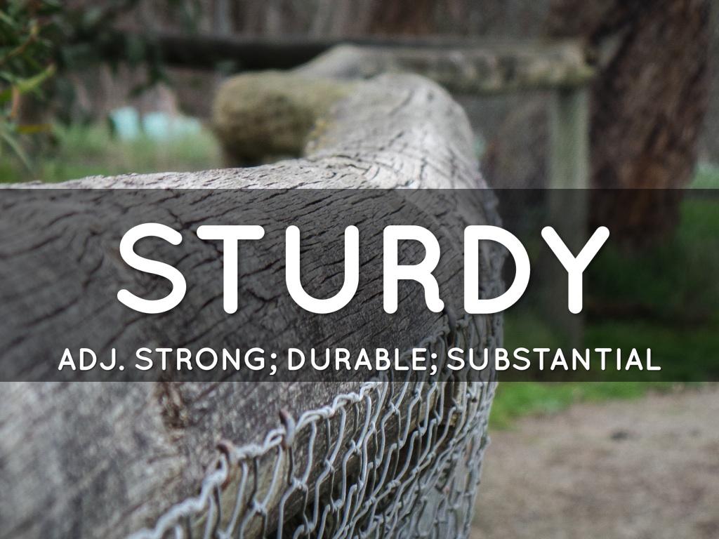 STURDY Emily's Word masters