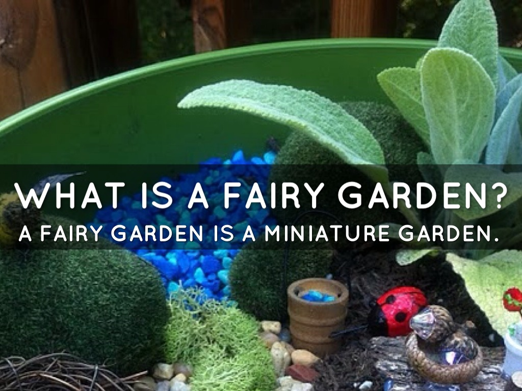 How To Make A Fairy Garden by Simone