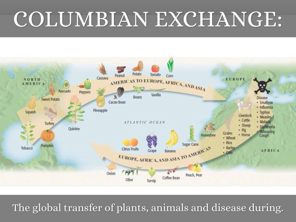 columbian exchange frq The columbian exchange is a vast subject once one realizes the number of items exchanged and the effects of the items this website takes a closer look at a few.