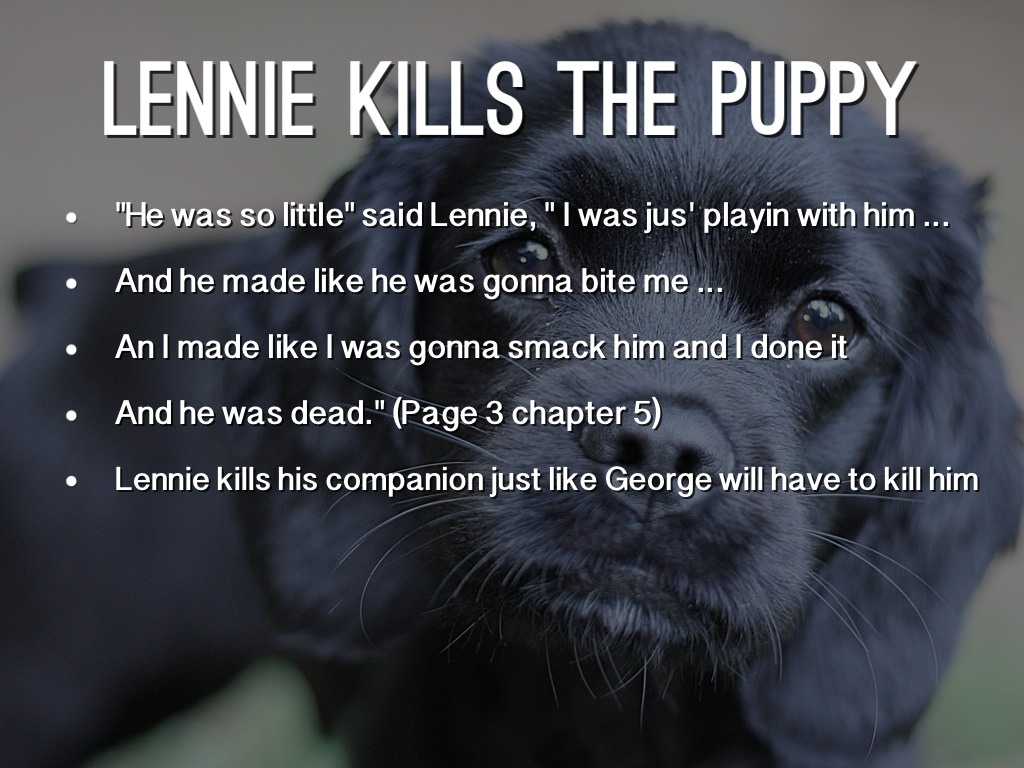 Of mice and men george kills lennie essay