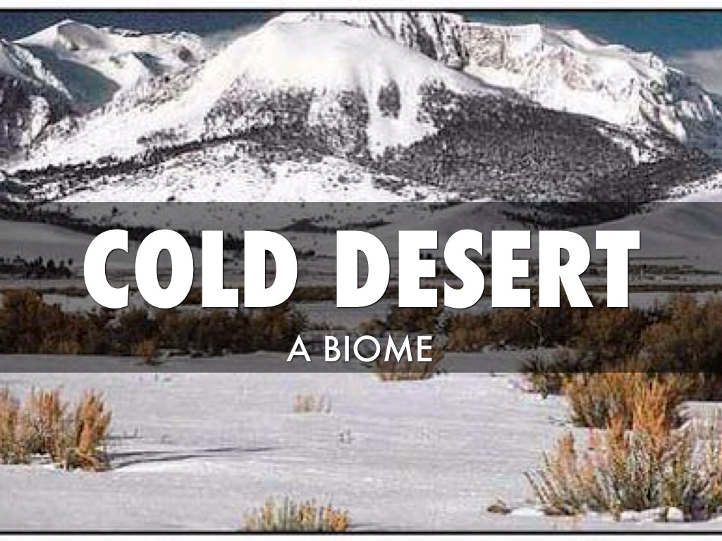 cold desert by alexis cahill