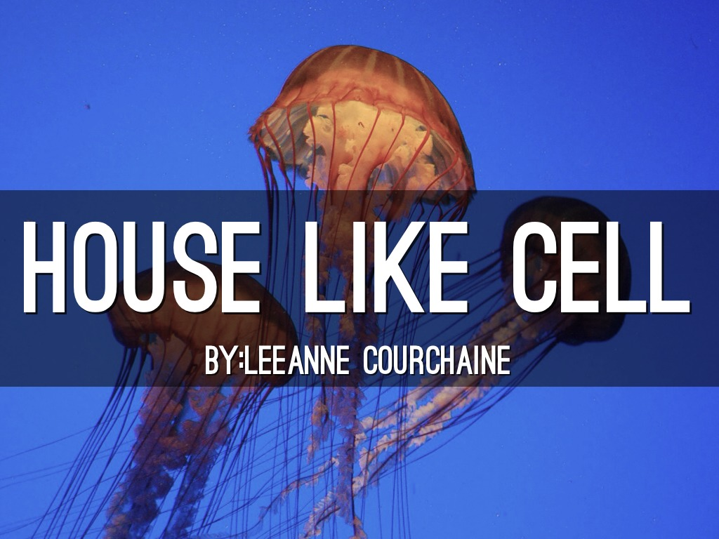 Cell Like House
