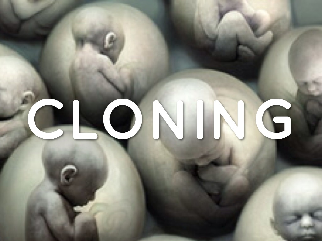 Ethics of cloning