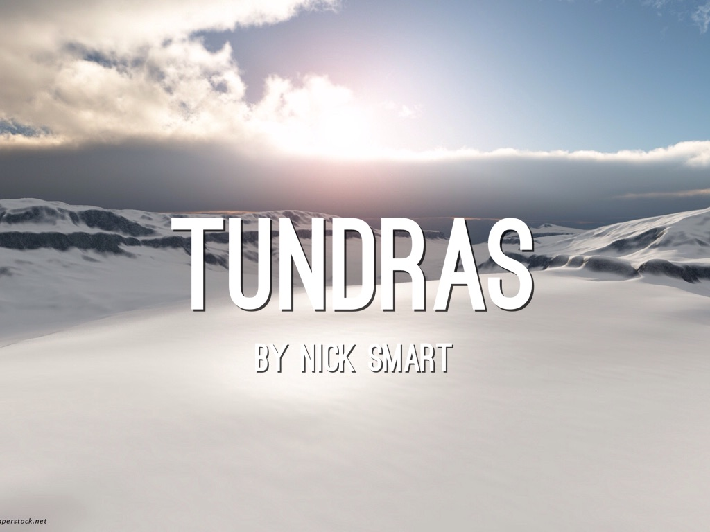 tundras by nick smart
