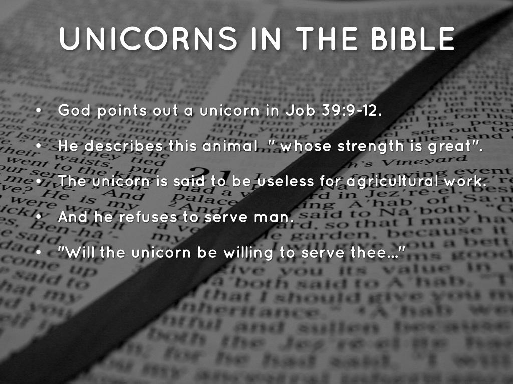Unicorns In The Bible: Unicorn By Allison Brink