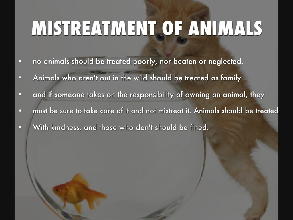 animals should be treated wih the This article discusses whether non-human animals have rights, and what is meant by animal rights.