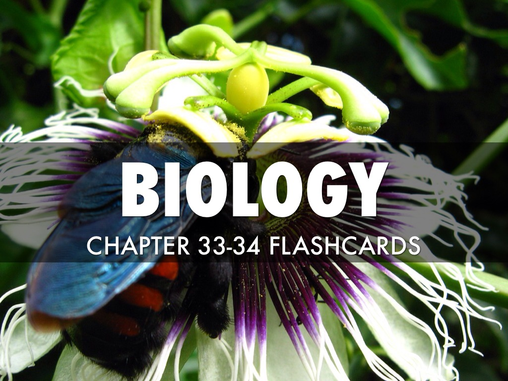 BIOLOGY flash cards