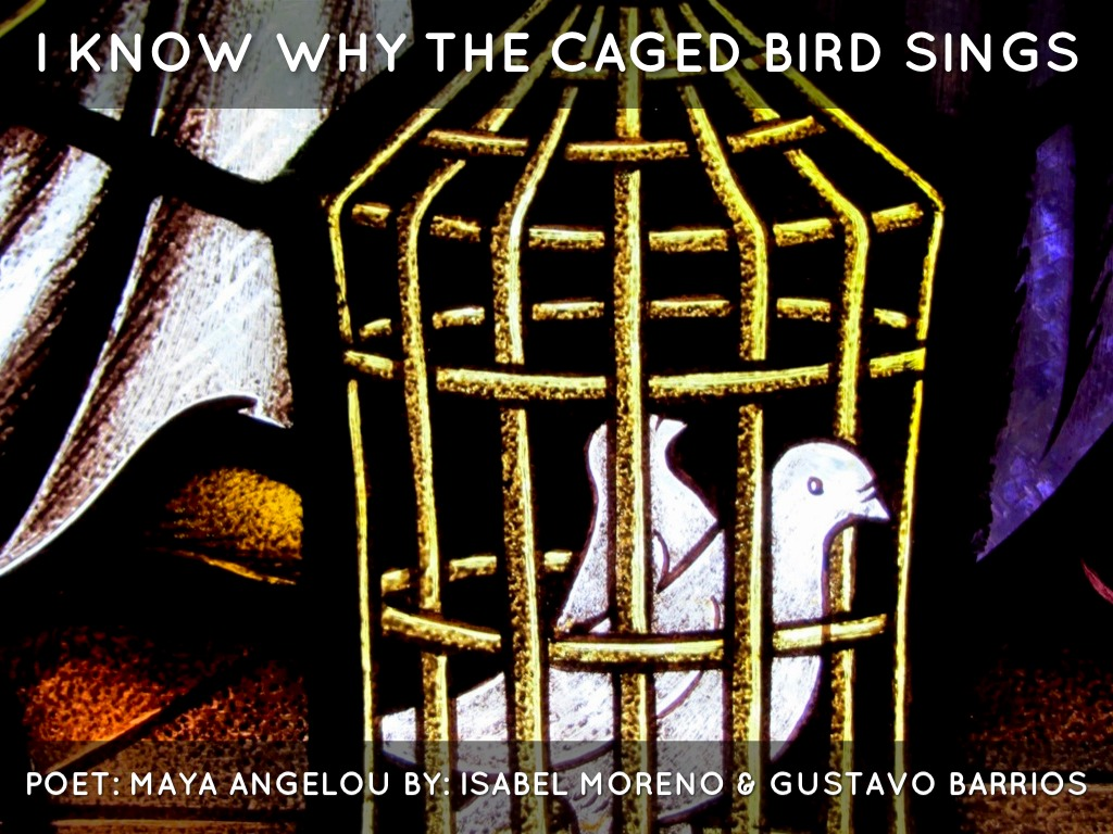 analysing the poem the caged bird sings english literature essay Gives students a side-by-side comparison of tone and mood details what they are, how they are produced, and how to analyze them follows with an analysis of the tone and mood of.