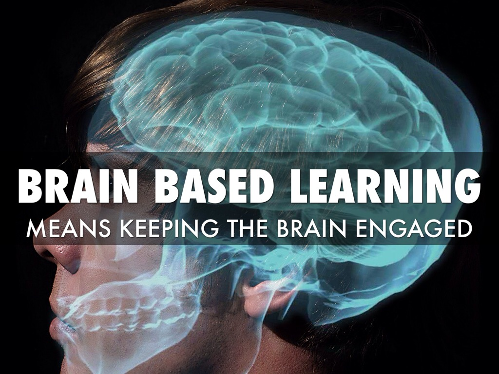Brain based learning environments