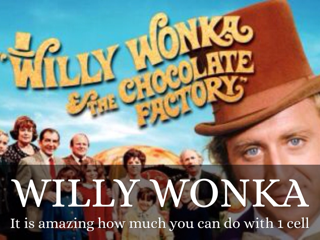 Willy Wonky By Nathan Borges