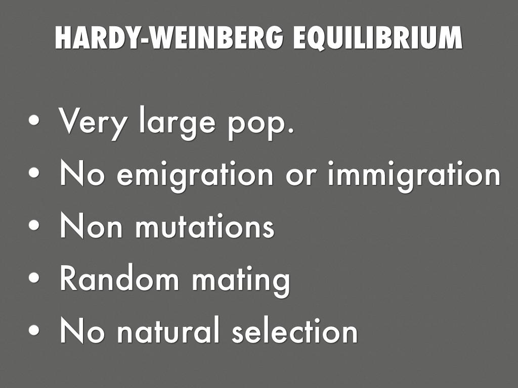 hardy weinburg equilibrium