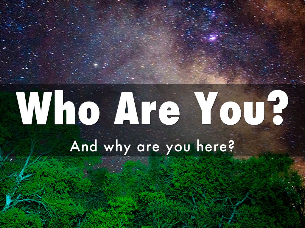 Who Are You? By Scott O'Reilly