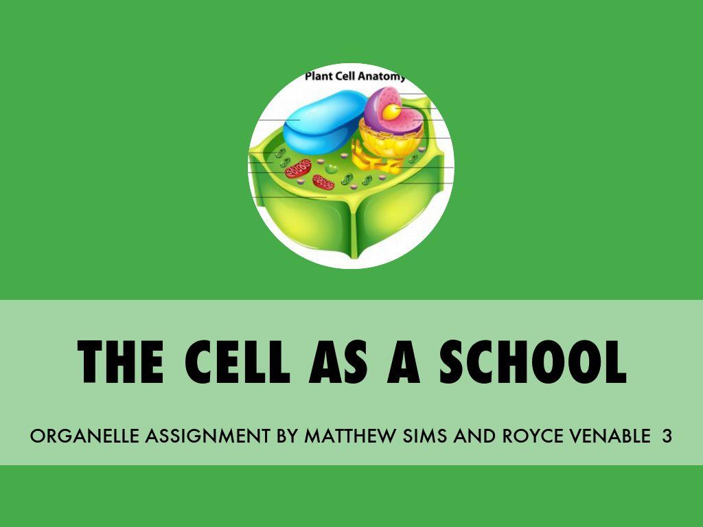 THE CELL AS A SCHOOL by Matt Sims