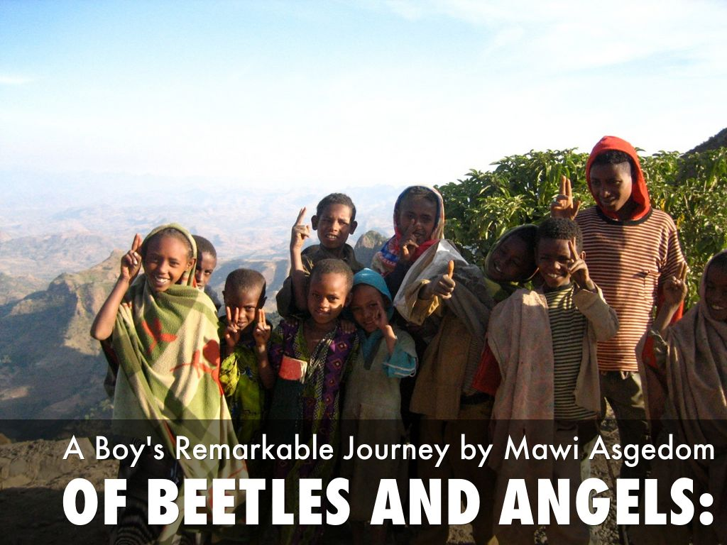angels and beetles Accoring to the book, beetles are people that will try to stop you from being yourself like a bully and angels are people who try to help and brighten your life.
