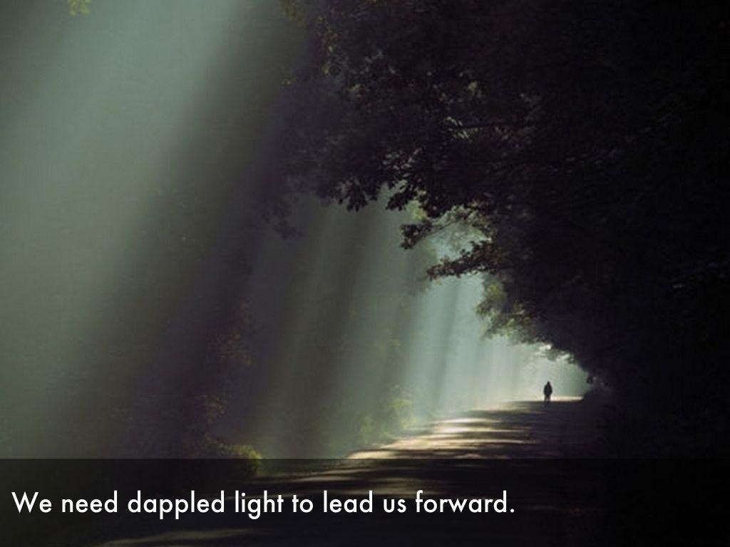 The Magic of Light