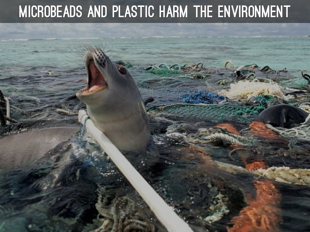 Microbeads are hurting the environment