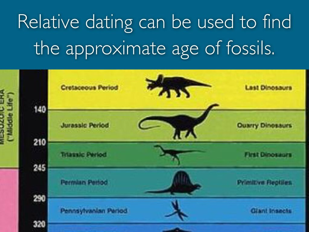 Relative dating fossils activity
