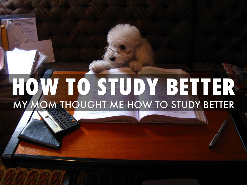 how to study better