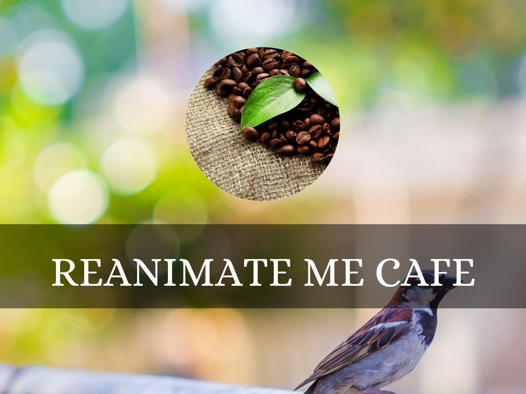 Reanimate Me Cafe