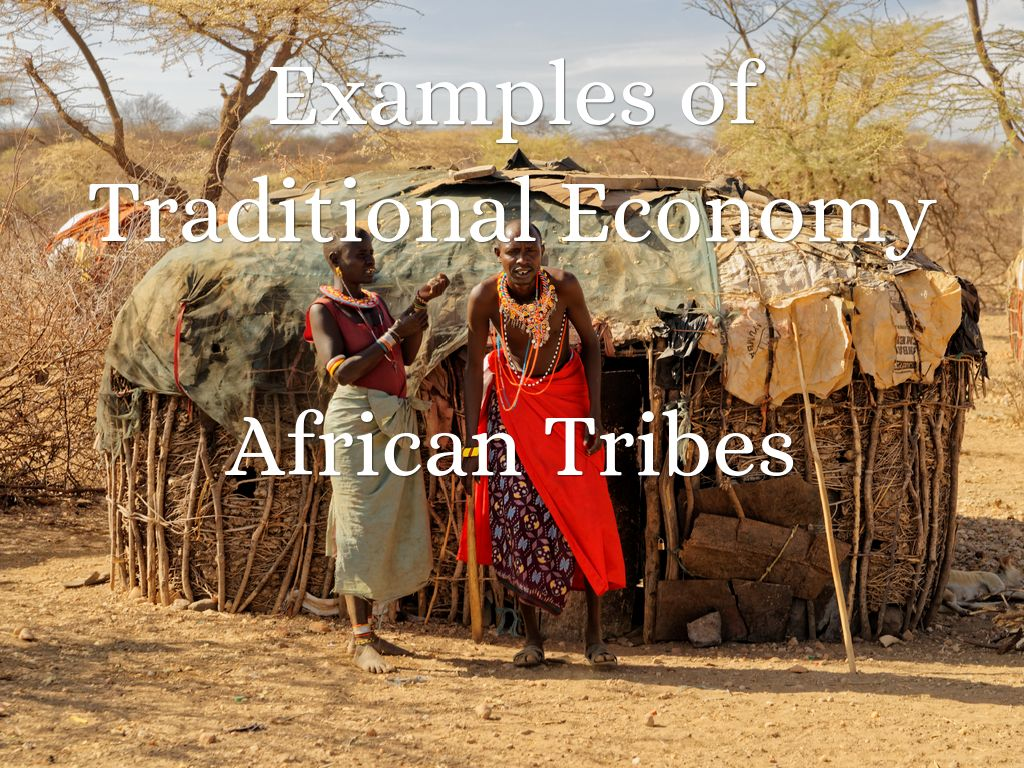 Traditional Economy By 10001423