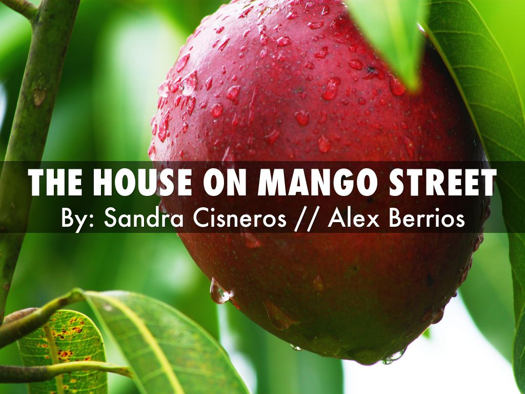 the house on mango street essay Free essay: name the house on mango street persuasive essay esperanza's new home i would like to nominate esperanza codero and her family for the extreme.