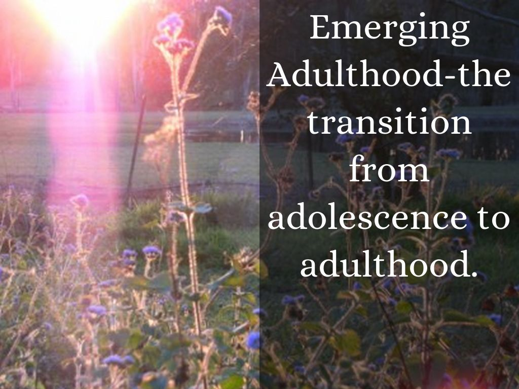 essay adolescence adulthood The transition from adolescence to adulthood (usually defined as the period from approximately age 18 to age 25) is important because it sets the stage for later adult life (arnett, 2000 george, 1993 hogan and astone 1986 shanahan, 2000.
