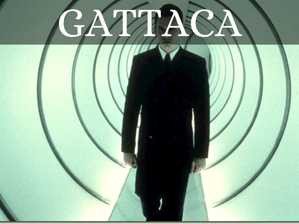 gattaca viewing questions Gattaca movie assignment answer keypdf free download here gattaca movie questions & essays - monikatubb - home gattaca viewing questions – answer key.
