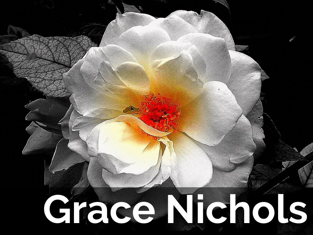 "tropical death y grace nichols Grace nichols b 1950 "" not only tropical death 29 invitation 30 thoughts drifting through the fat black woman's head while having a full bubble bath 31."