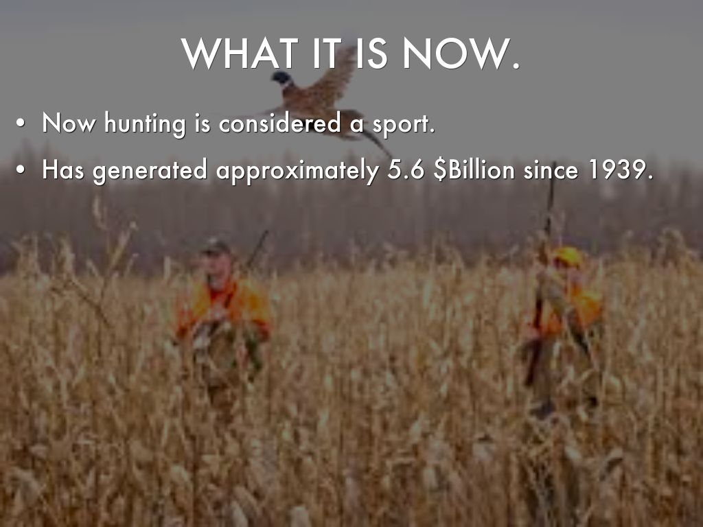 is hunting considered a sport