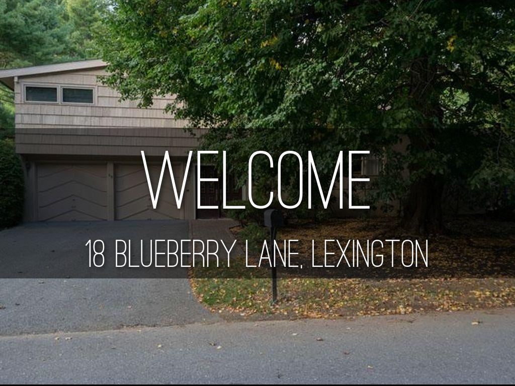 18 Blueberry Lane, Lexington