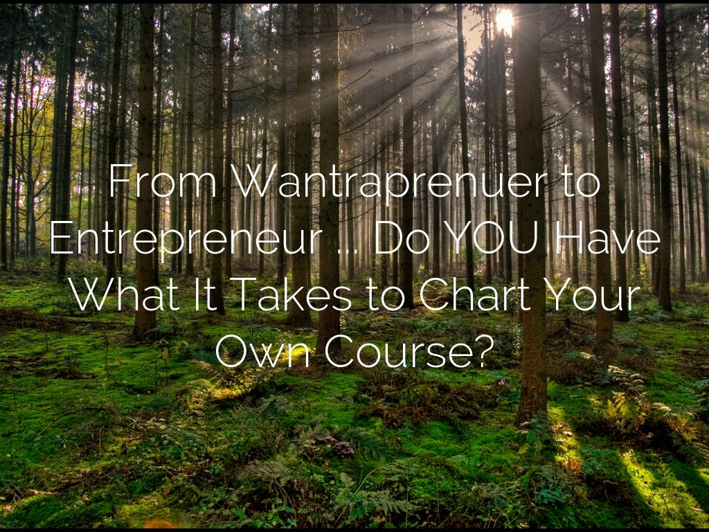 From Wantraprenuer to Entrepreneur ... Do YOU Have What It Takes to Chart Your Own Course?