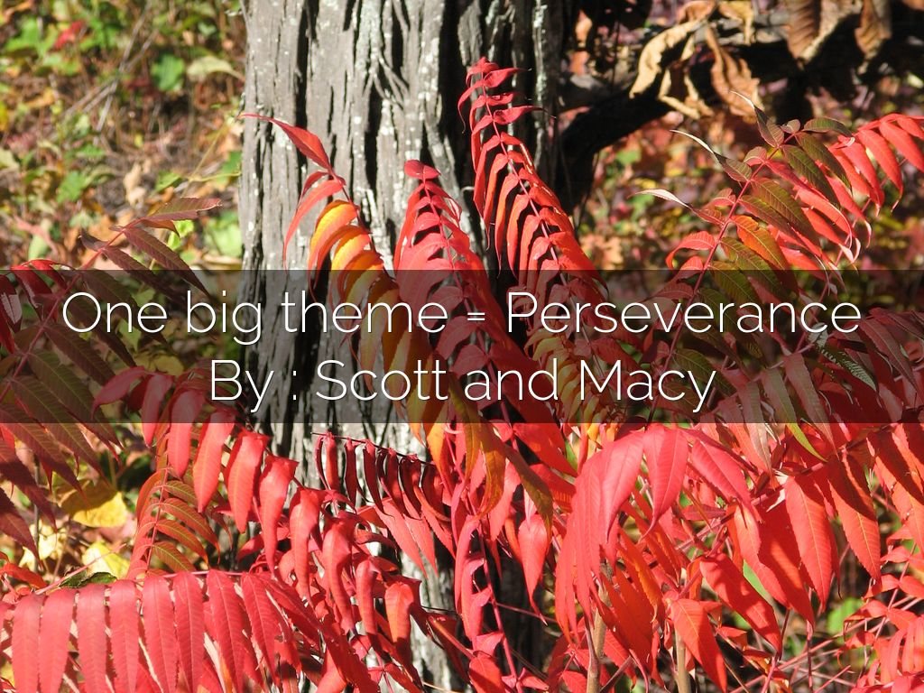 where the red fern grows perseverance Perseverance quotes from the  chapter 5 a lesson before dying vivian quotes map of lord of the flies chapter summary the absolutely true diary where the red fern.