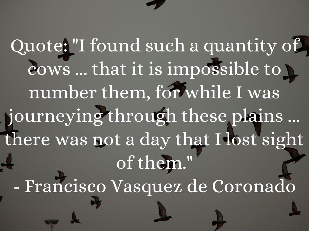 francisco vazquez de coronado Francisco vasquez de coronado was among the very first of this long line of fortune seekers in texas coronado was born at salamanca, spain in 1510.