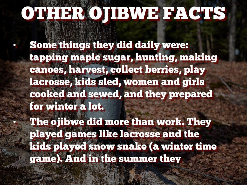 Dakota And Ojibwa By Ashlyn Schouviller