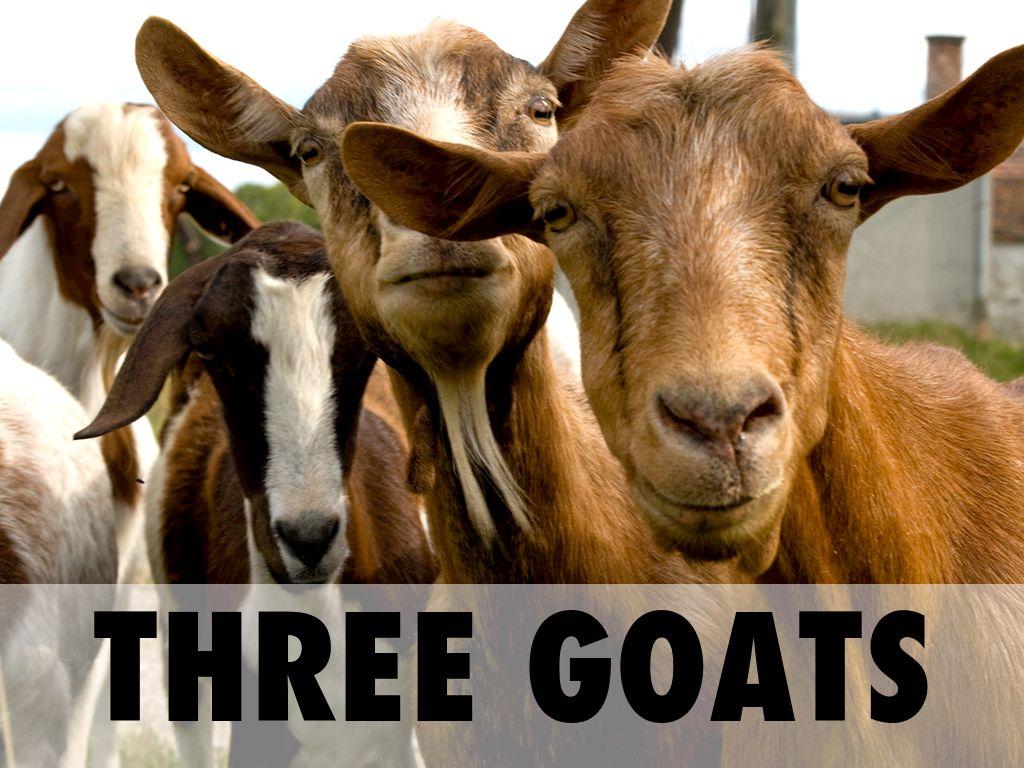 The Three Billy Goats Gruff by Alison Carroll