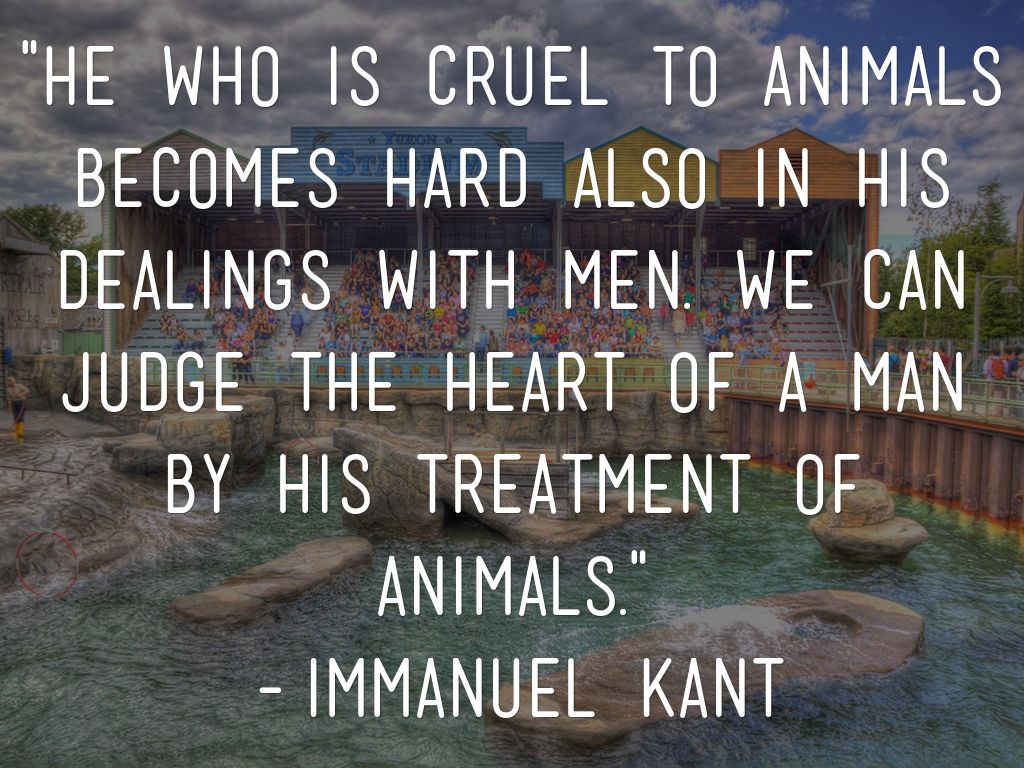 who is cruel animal or man