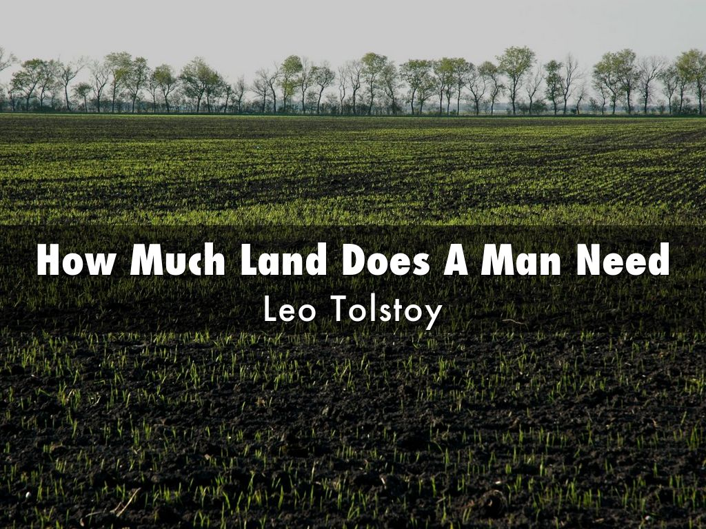 Does essay land man much need tolstoy