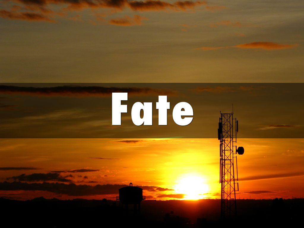 Online Dating vs. Fate