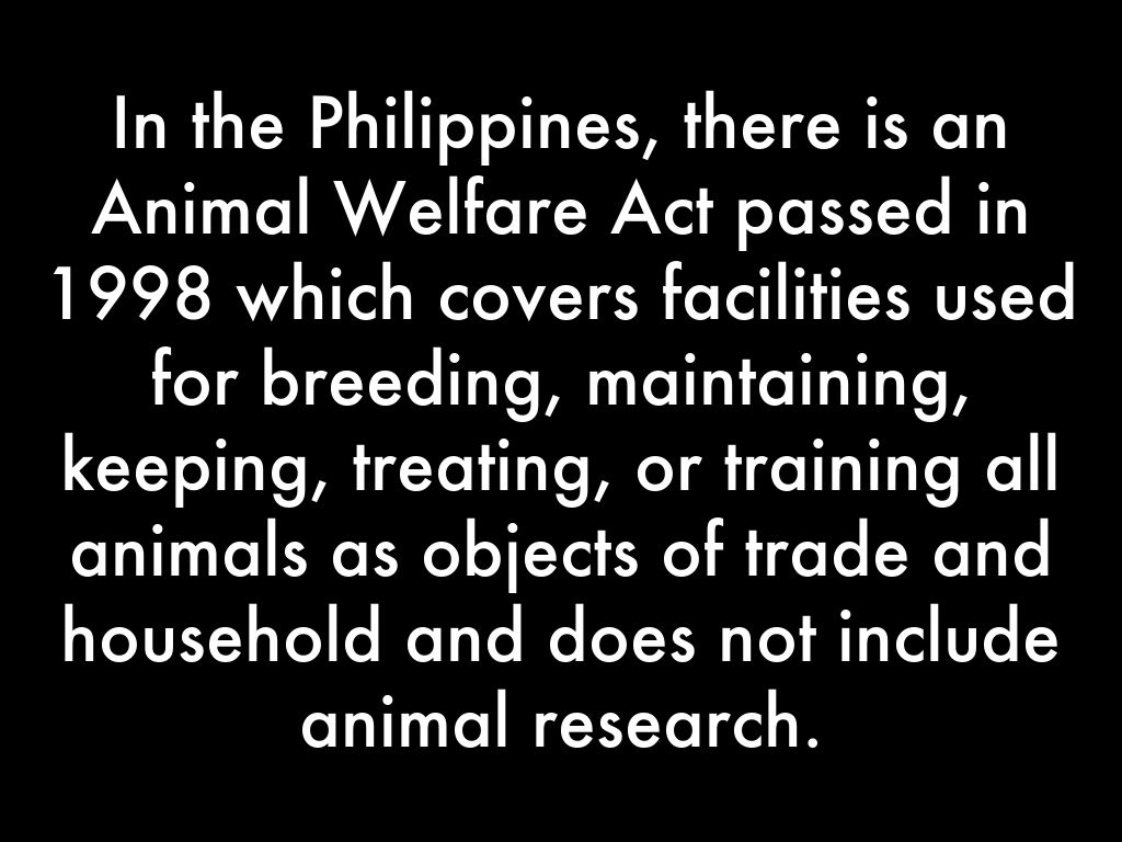 the animal welfare act of 1998 Philippines animal welfare act 1998 poland animal protection act 1997 protocol on protection and welfare of animals1997 treaty of.