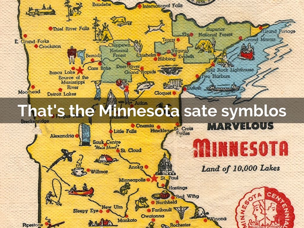 Mn State Symbols By Billie Renaux