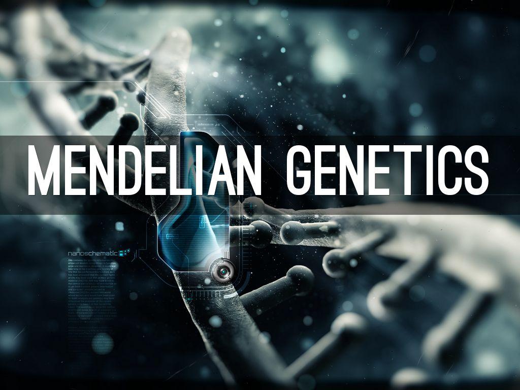 Copy of Mendelian Genetics by jainik.patel1524