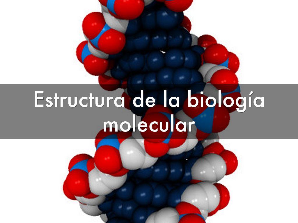 Estructura De La Biología Molecular By Anthuany Baez