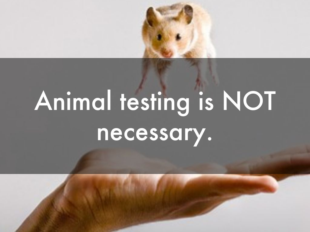 animal testing should be banned by society and the government Debate: that animal testing should be banned that this will ever stop as long as society endorses should the government ban animal testing.
