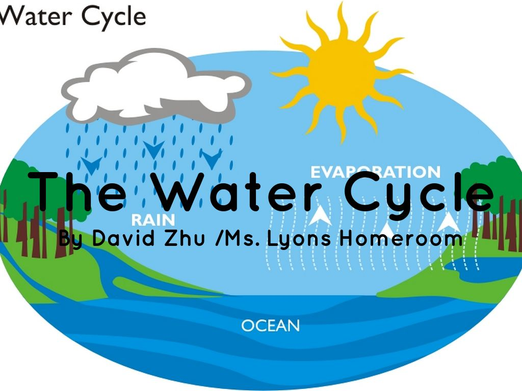 Water Cycle: The Water Cycle By Hey People! Get Out Of My Account
