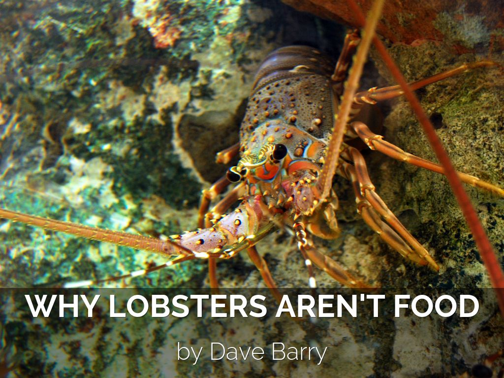 Why Lobsters Aren't Food by Dave Barry