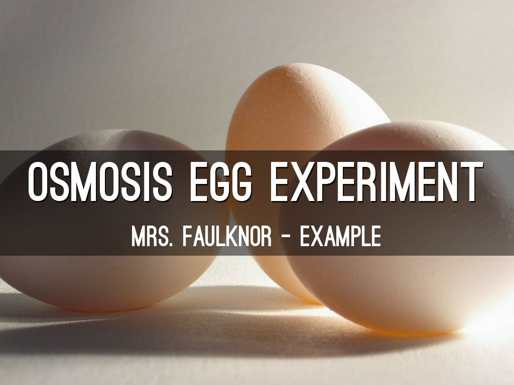 osmosis egg experiment How to make a naked egg that's osmosis at work if you leave your egg in the syrup long enough it will instead of eating your naked egg, just experiment.