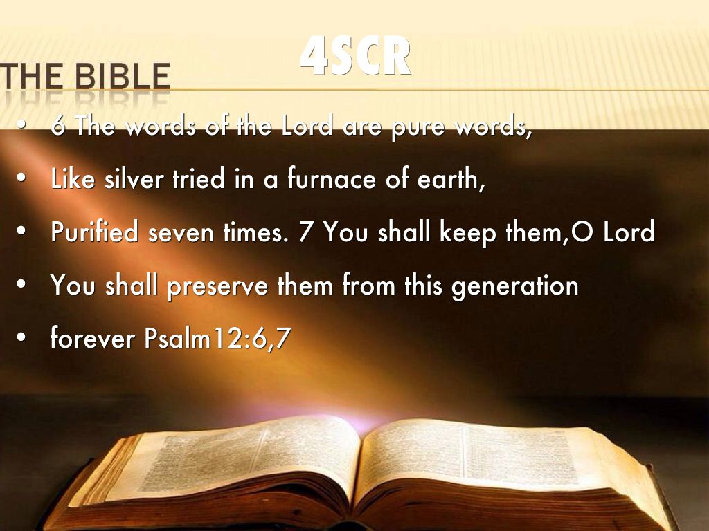 the bible scr by frank new