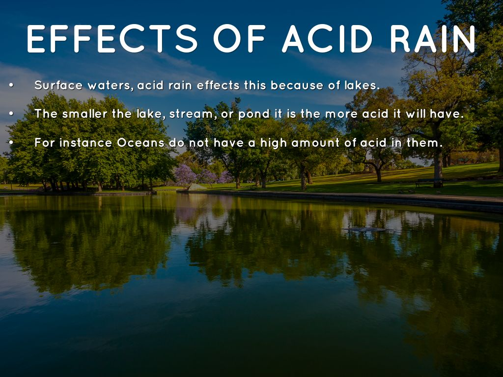 the effects of acid rain in north america What is acid rain, where is it a problem in north america, and why is it a concern in canada – united states relations.