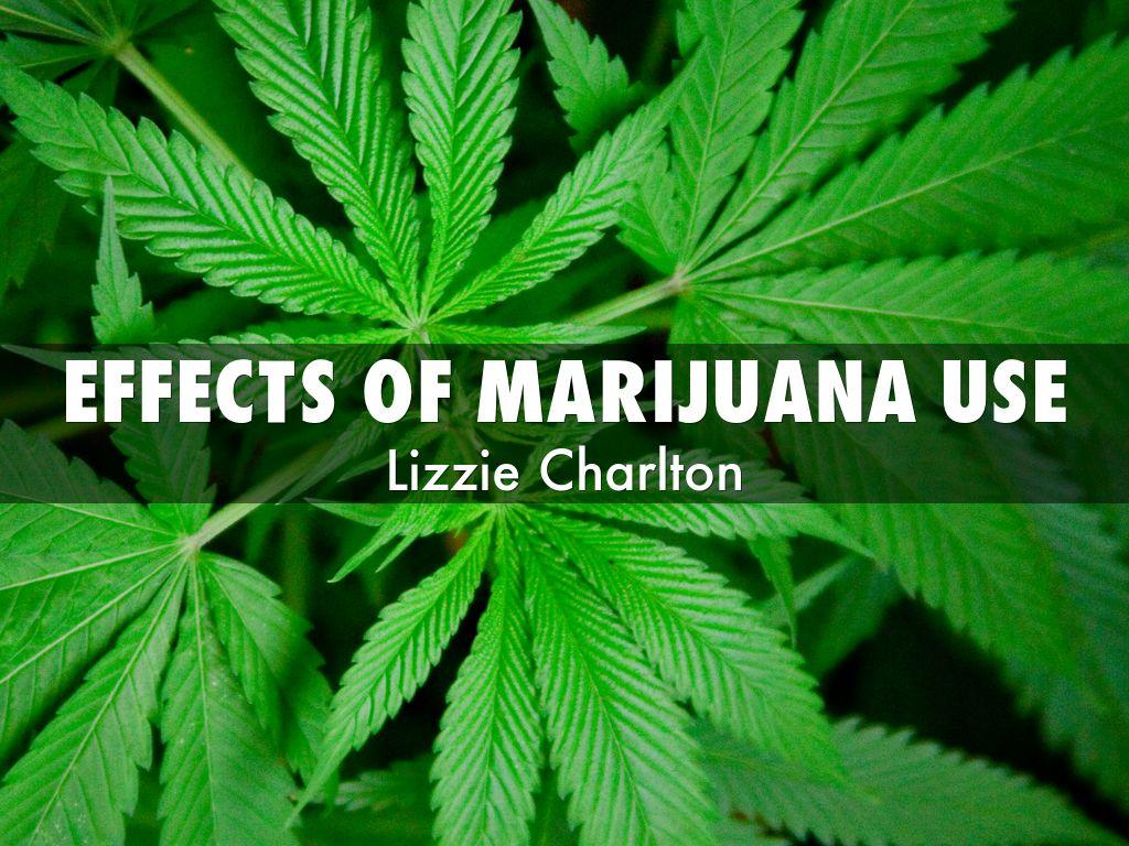 effect of marijuana