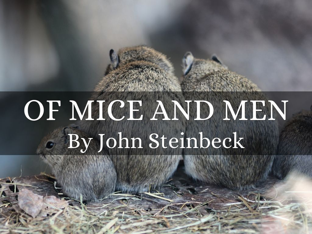 mice and men did steinbeck use candy s dog symbol Of mice and men also represents an experiment in form, as steinbeck described his work, a kind of playable novel, written in novel form but so scened and set that it can be played as it stands a rarity in american letters, it achieved remarkable success as a novel, a broadway play, and three acclaimed films.